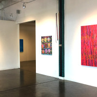 """Jungle Transmission"" at Conduit Gallery"